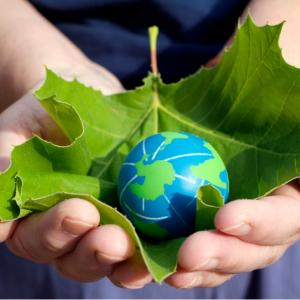 What is the difference between sustainable and sustainable